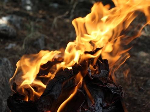 Ilustrativna slika vatre koja gori