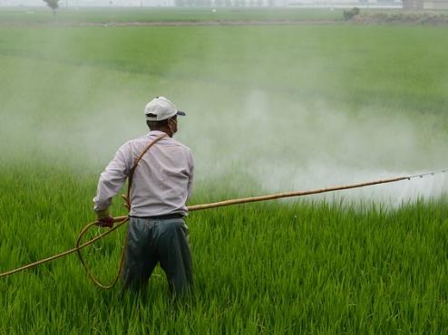 Ilustrativna fotografija tretiranja polja pesticidom